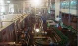 海外企業(工場)視察